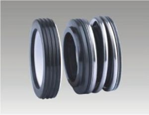 Low Pressure Mechanical Seals (E60/65) pictures & photos
