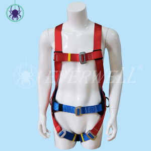 Safety Harness with Two-Point Fixed Mode (EW0314H)