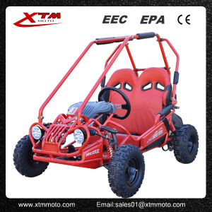 Racing Safe 2 Person Gas Pedal Buggy Kids Go Kart
