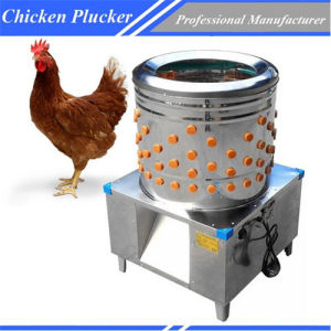 High Quality Brand New Commercial Poultry Plucker Equipment Chz-60 pictures & photos