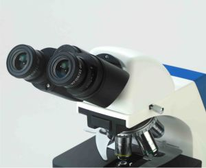 Researching LED Seidentopf Trinocular Biological Microscope and Upgrade Available (PW-BK6000) pictures & photos