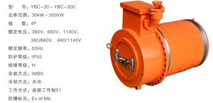 Explosion-Proof Three-Phase Asynchronous Motor for Coal Winning Machine