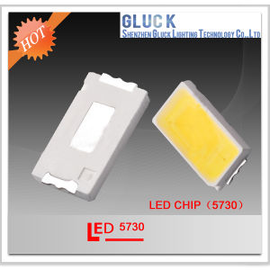 Red 55-65lm 5730 SMD LED for Lighting