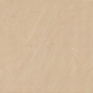 60X60 Hard Body Indoor Or Outdoo Living Room Floor Tile