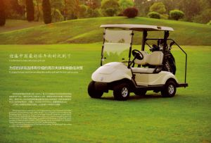 Dongfeng Motor 3800W Super Power Electric Go Cart Golf Cart with Excellent Quality