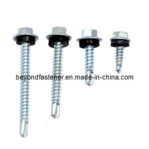 Self Drilling Screw DIN7504k pictures & photos