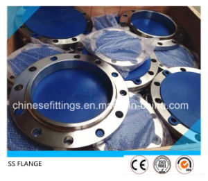 ANSI Forged Stainless Steel 1.4541 Cl300 321 Flange pictures & photos