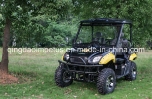 Hot Sale 5kw 2-Seat Electric UTV pictures & photos