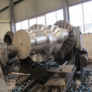 Ss316 Stainless Steel Spur Pinion Shaft pictures & photos