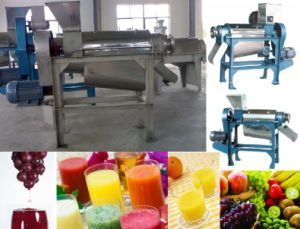 Fruit Juice Extractor (GGJE)