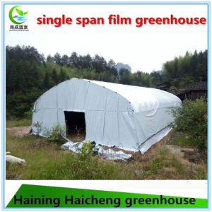 Cheap Commercial Plastic Tunnel Tomato Greenhouses for Sale pictures & photos