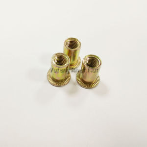 M8 Flat Head Rivet Nut with Yellow Zinc pictures & photos