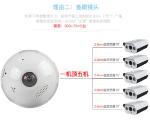 360 Degree CCTV P2p Wireless IP Camera pictures & photos