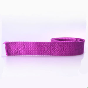 Flat 4 Inch Pink PP/Polypropylene Belt Webbing in Tape pictures & photos