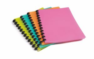 File Folder Display Book Clear Book with Removable Pockets