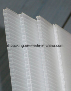 Black or White PP Hollow Board/Corrugated Plastic Sheet 1000*2000, 1220*2440 for Protection 2-3mm pictures & photos