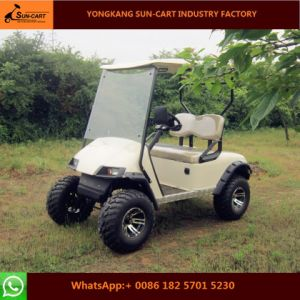 Hot Sale 2 Seater Electric Hunting Golf Cart