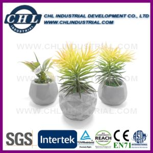 Garden Decorative Personalized Cement Flower Pot with Logo Printed pictures & photos