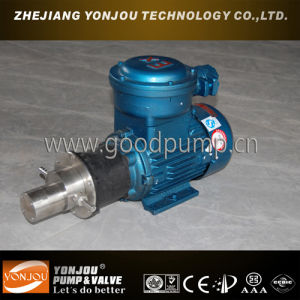 Cqcb Magnetic Drive Pump with Explosion-Proof Motor pictures & photos