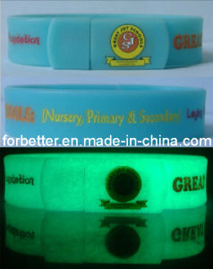 USB Silicone Wristbands - Glow in The Dark pictures & photos