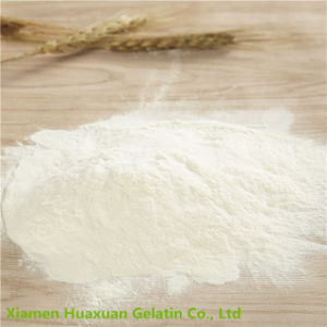 Food Ingredient Food Additive Collagen Powder pictures & photos