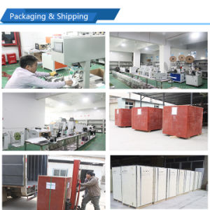 Full Automatic Multifuctional Wire Cutting Stripping Twisting Tinning Machine pictures & photos