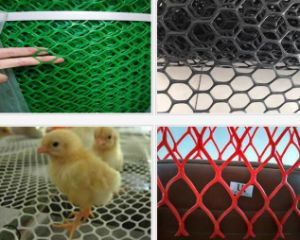Plastic Flat Mesh / Poultry Netting
