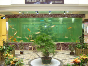 The Largest Acrylic Fish Tank Supplier