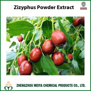 Health Ingredient Zizyphus Jujuba Powder Extract with Jujubosides 1%, 2% pictures & photos