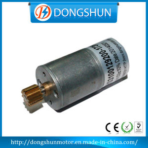 Ds-25RS310 6V 12V 24V 25mm DC Gear Motor
