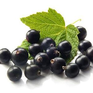 Blackcurrant Extract with Anthocyanidin for Food Supplement pictures & photos