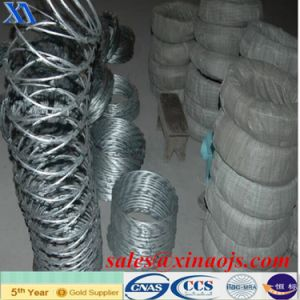 Hot Sell Products Galvanized Barbed Wire (XA-BW3) pictures & photos