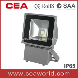 LED Floodlight with CE & SAA Certification pictures & photos
