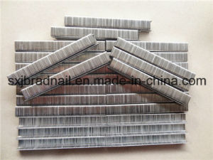 Good Price 10j Series Furniture Staples From China pictures & photos