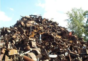 Steel Scrap with Competitive Price