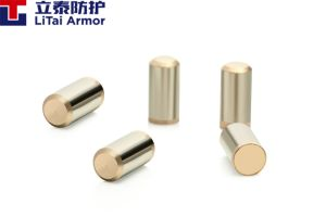Discharge Tube Electrode