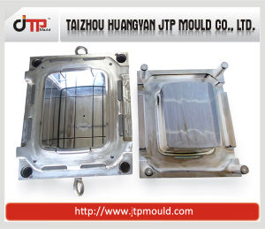 Injection Food Container Mould Plastic Moulding pictures & photos