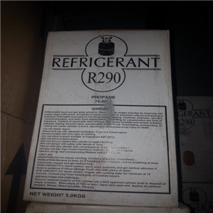 Wholesale High Purity Competitive Price R290 Refrigerant Gas R290 for Air Conditioner