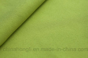 75D Double Layer Polyester Fabric pictures & photos