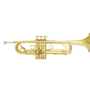 Brush Finishing Trumpet (TR-450B) pictures & photos