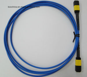 MPO/APC-MPO/APC Fiber Optic Cable pictures & photos