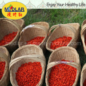 Medlar Lbp Organic Goji Berries Dried Fruit