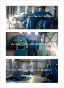 High Voltage Hydro (Water) Turbine Generator Unit 6.3kv / Hydroturbine / Hydropower