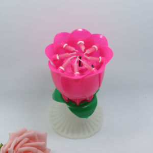 China Rose Shape Candles Happy Birthday Candle pictures & photos