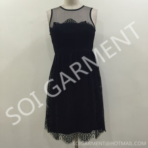 Hot Sale Lace and Mesh Party Dress for Women (DR-64)