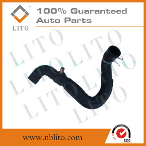 Lower Radiator Hose for Chevrolet pictures & photos