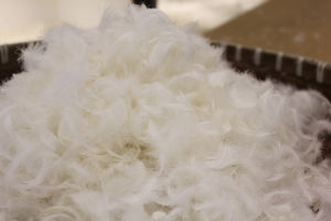 100% 2-4 Cm White Goose Feather for Sofa and Topper and Pillow Filling