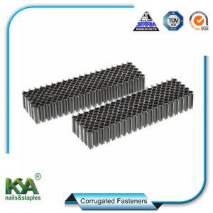 China Corrugated Fastener, Corrugated Fastener Manufacturers