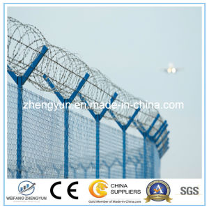 High Quality Y Post Fence, Square Wire Mesh Fence