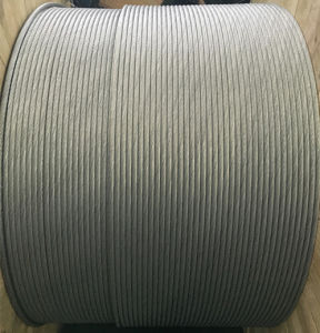 Aluminum Clad Steel Strand Acs Wire pictures & photos